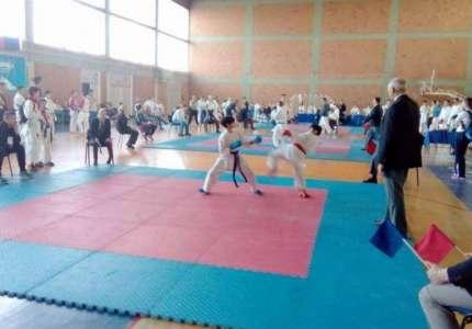 Međunarodni turnir u karateu